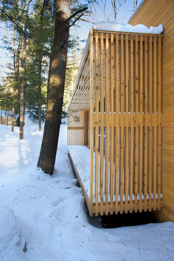 Дом из дерева посреди канадского леса 12