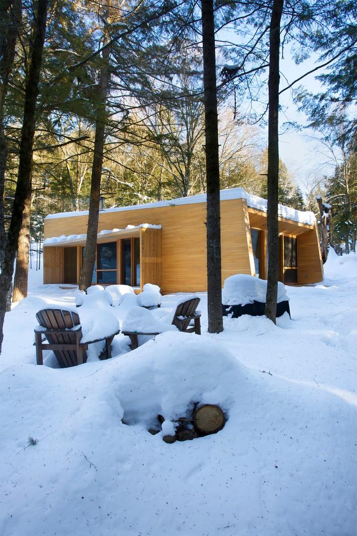 Дом из дерева посреди канадского леса 21