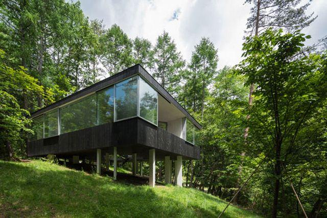 Прозрачный дом в лесу префектуры Нагано 1