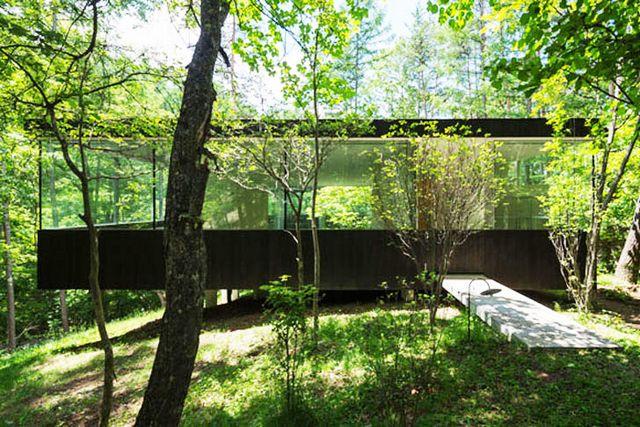 Прозрачный дом в лесу префектуры Нагано 2