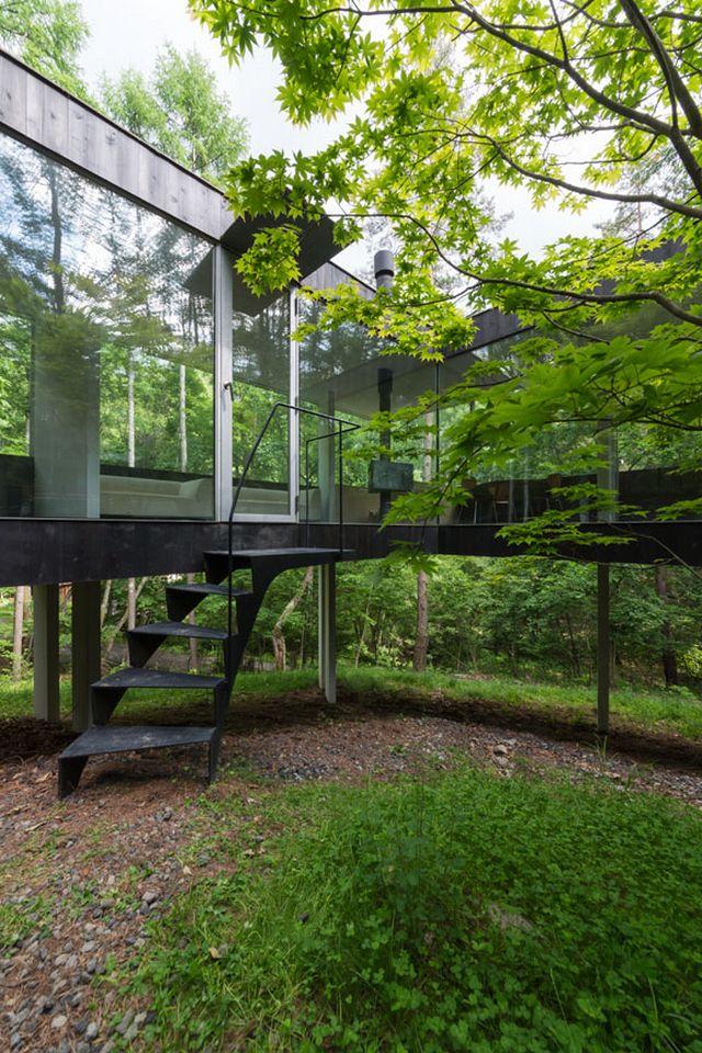 Прозрачный дом в лесу префектуры Нагано 3