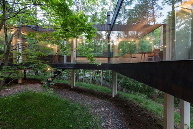 Прозрачный дом в лесу префектуры Нагано 4