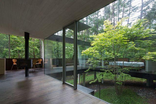 Прозрачный дом в лесу префектуры Нагано 5