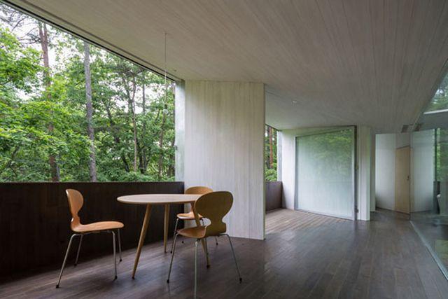 Прозрачный дом в лесу префектуры Нагано 6