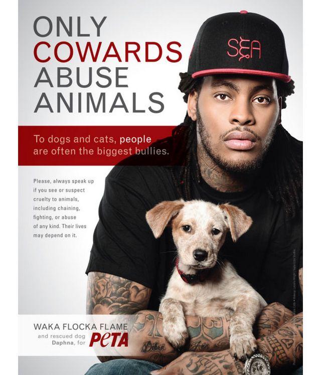 Креативная реклама от PETA 17