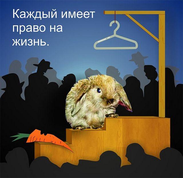 Креативная реклама от PETA 19