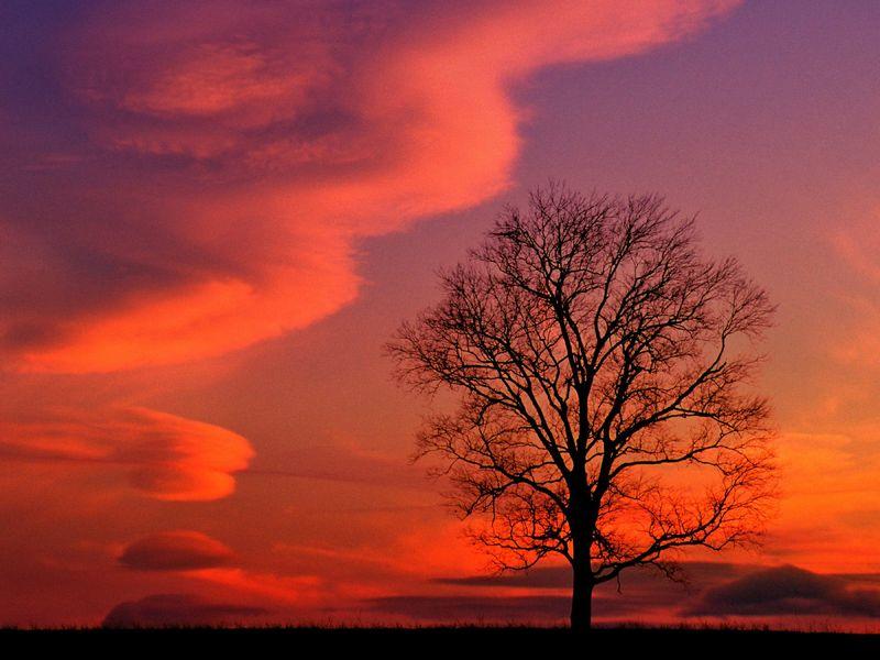 Красивые фото заката солнца - Crimson Twilight, Kentucky