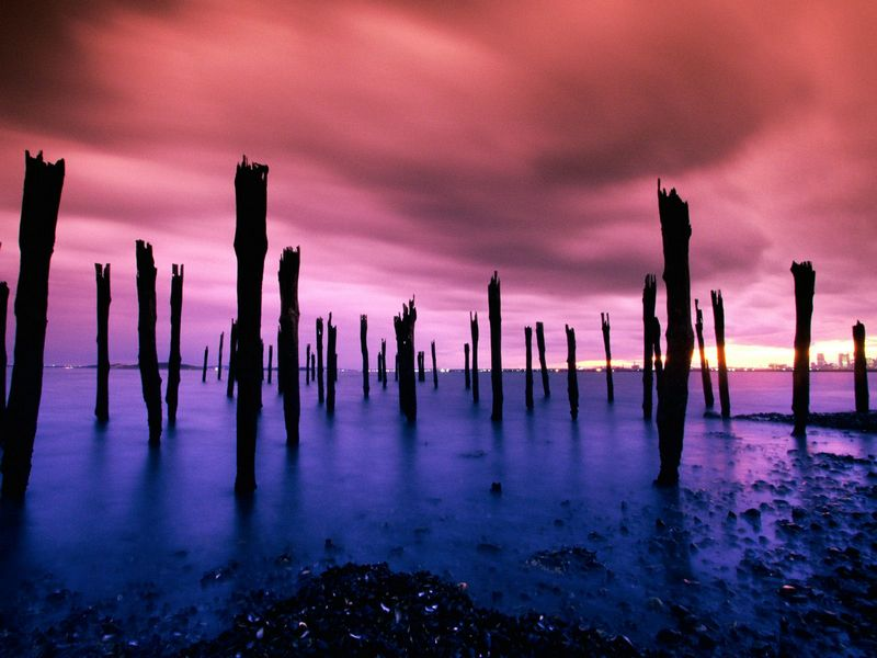 Красивые фото заката солнца - Dock Pilings, Boston Harbor, Massachusetts