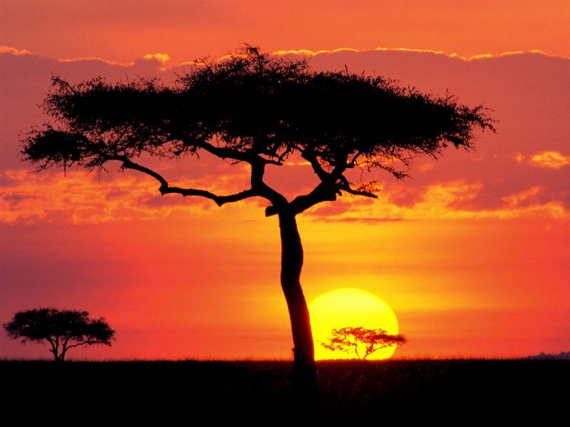 Красивые фото заката солнца - Masai Mara Game Reserve at Sunset, Kenya