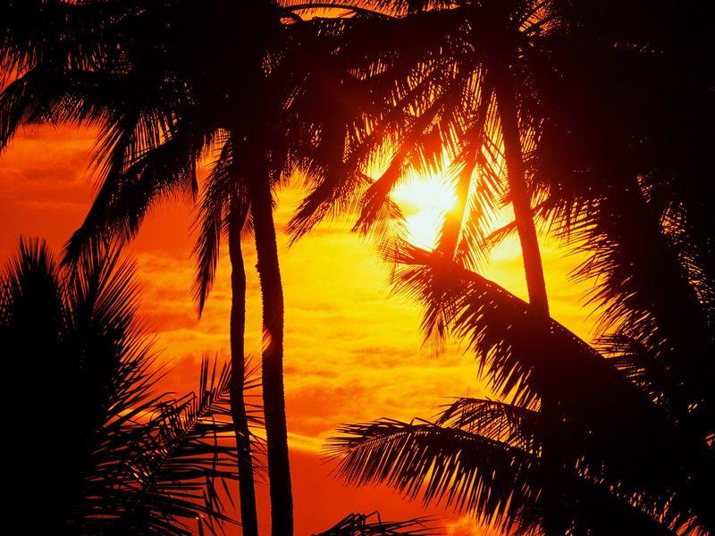 Красивые фото заката солнца - Maui Sunset
