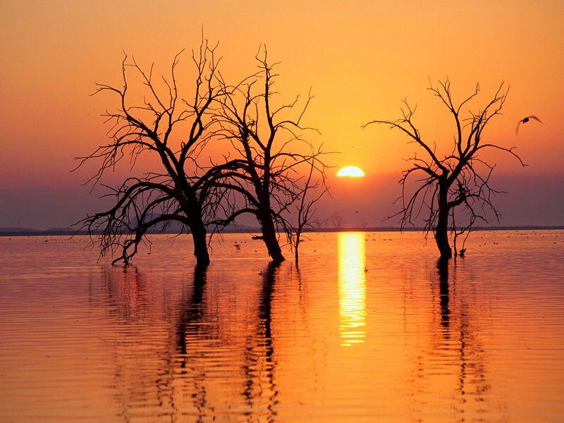 Красивые фото заката солнца - Salton Sea State Recreation Area, California