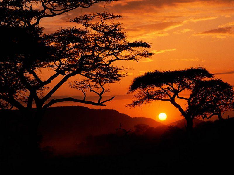 Красивые фото заката солнца - Serengeti National Park Sunset, Tanzania