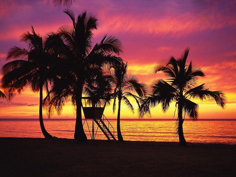 Красивые фото заката солнца - Silhouettes at Sunset, Oahu, Hawaii