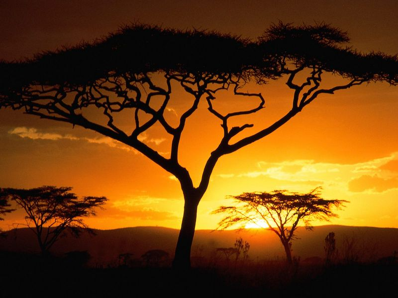 Красивые фото заката солнца - Tanzanian Sunset
