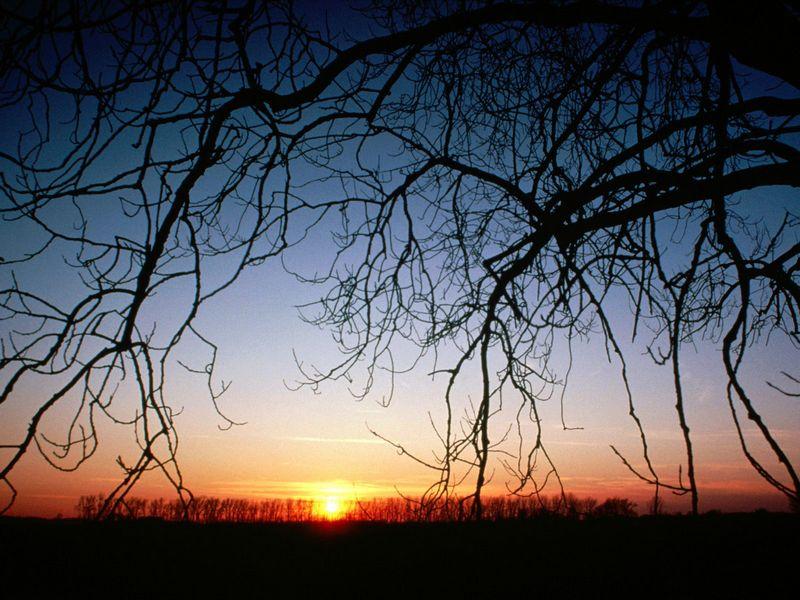 Красивые фото заката солнца - Winter Sunset