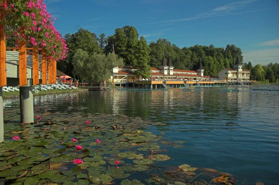 Лечебные воды озера Хевиз 13