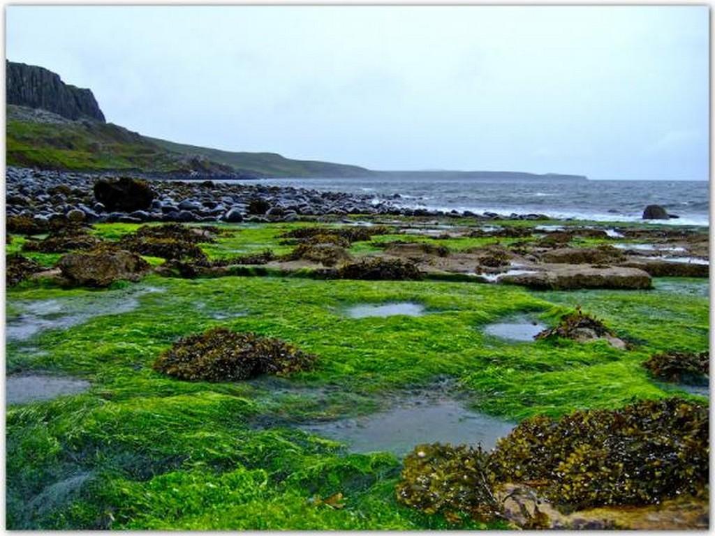 Красивые фото Шотландии 7