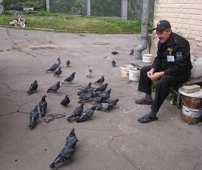 Николя ловит голубей 1.jpg