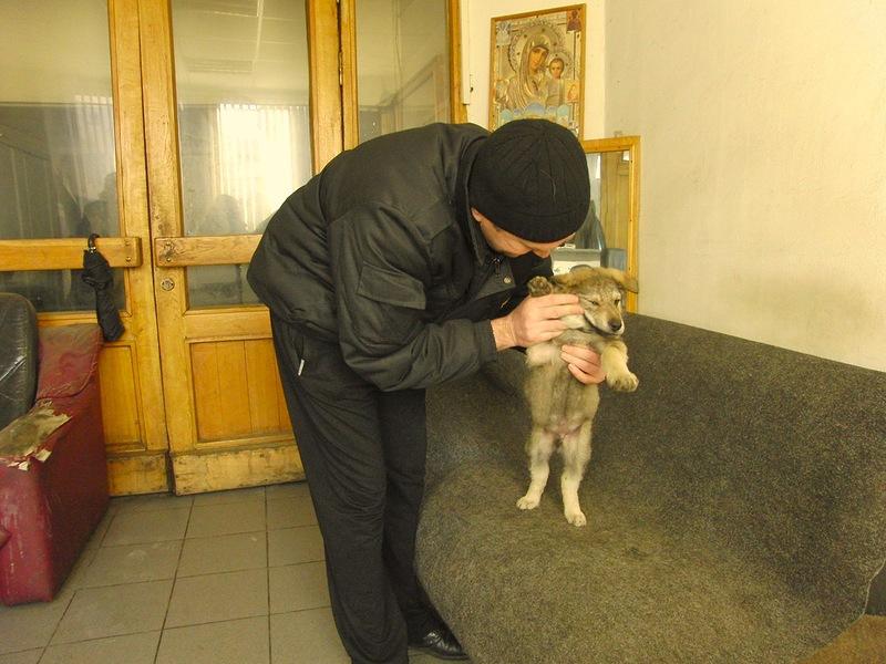 Олег Канис II 10-е марта 2014 3.jpg