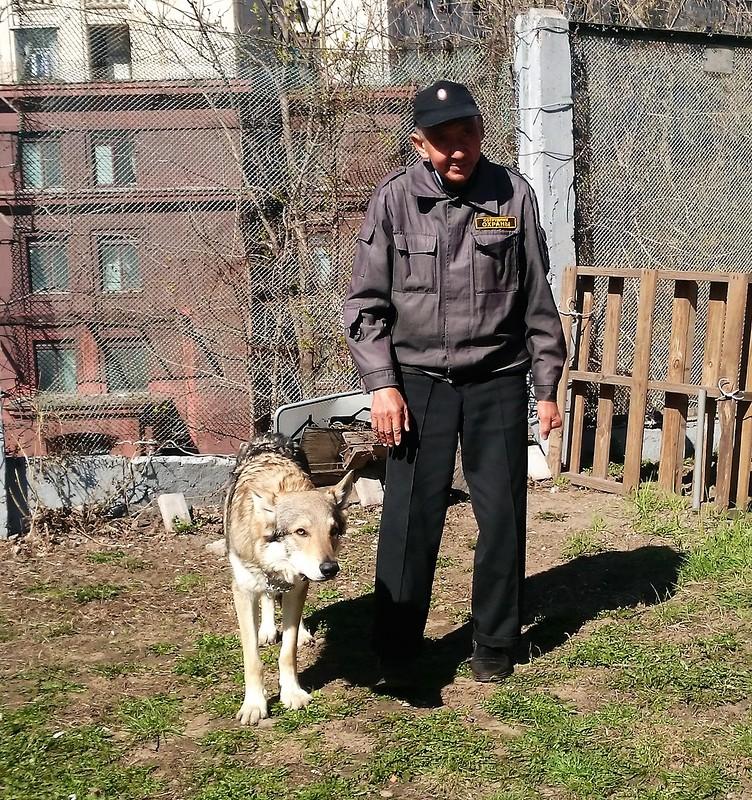 Гайнулла и Канис 24 апреля 2016 1.JPG