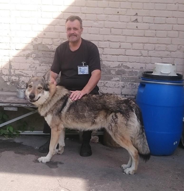 Николай и Канис 8.JPG