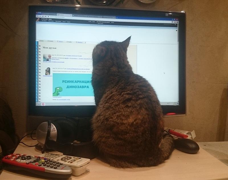 Джойка читает новости жж.jpg