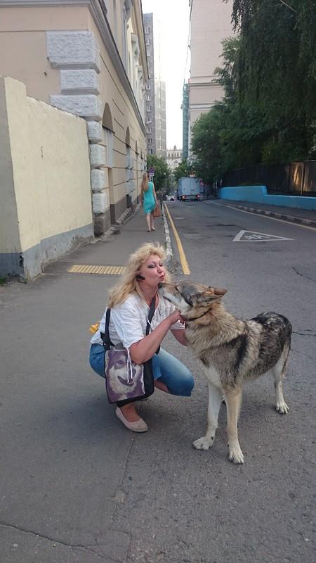Ольга и КАнис 27 июня 2016 3.JPG