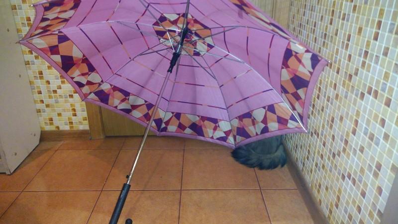 Ульси и зонтик 2.jpg