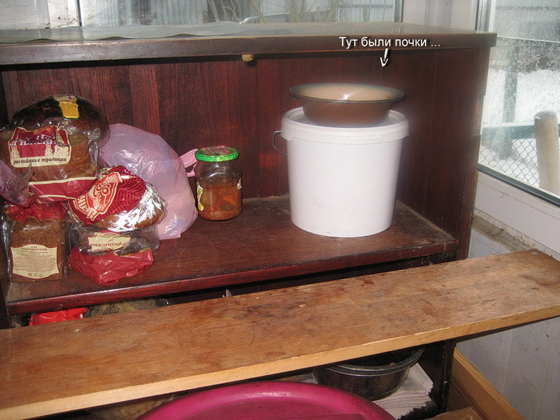 холодильник на крыльце.JPG
