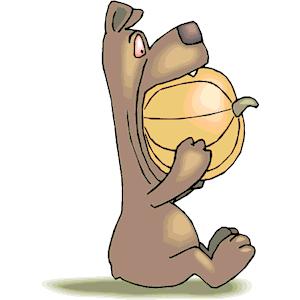 Bear_Eating_Pumpkin.png