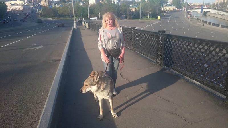 Ольга с Канисом на Устьинском мосту 2.jpg