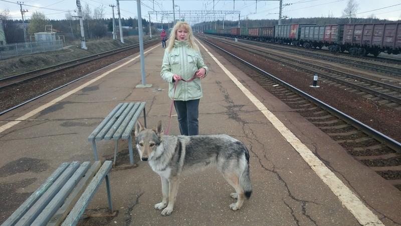 Ольга с Канисом Петелино 1.jpg