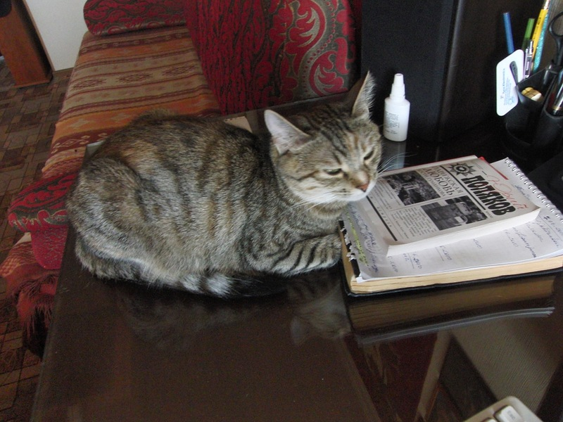 Джойка читает Юрия Полякова.jpg