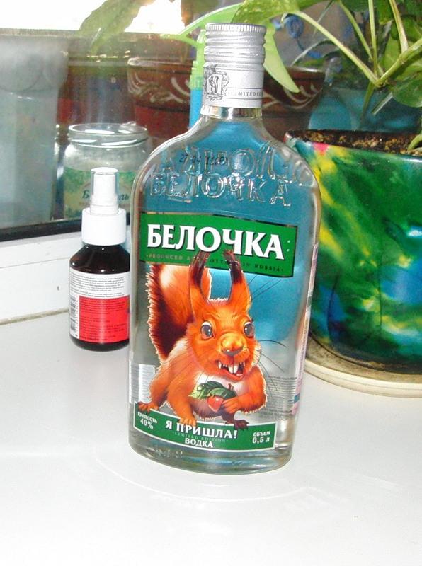 Белочка водка приколы 2.jpg