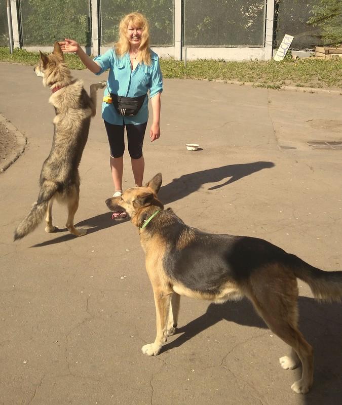 Ольга с Канисои и Найдой 23 мая 2014.jpg