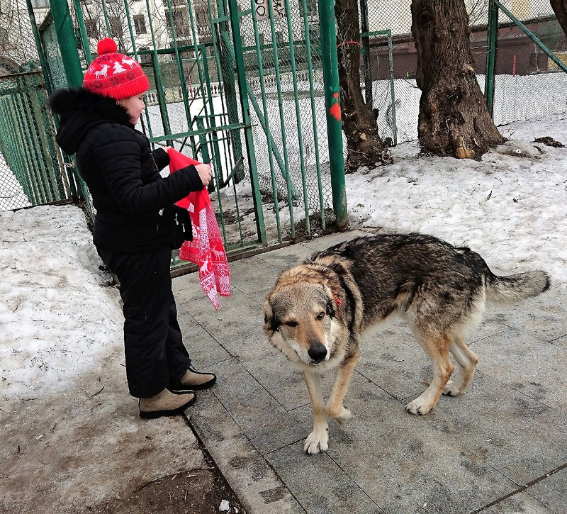 Красная шапочка и серый волк 1.jpg