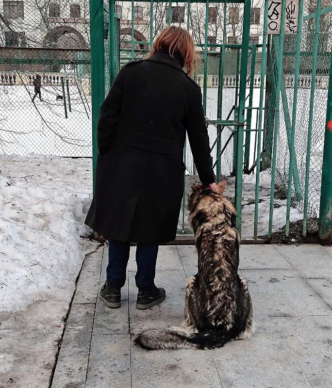Антон Канис 3 апреля 2018.jpg