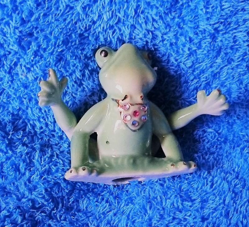 Лягушка из Набережных Челнов 1.jpg