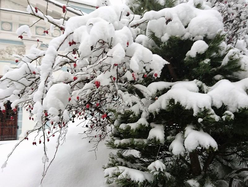 Снегопад в Москве февраль 1.jpg