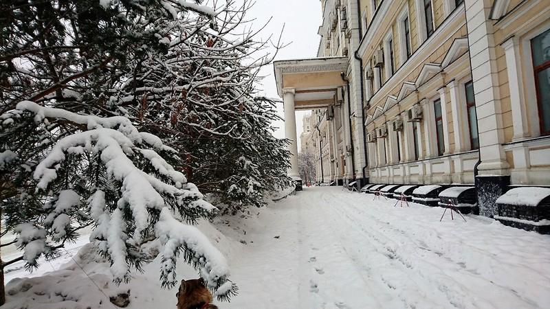 Снегопад в Москве февраль 2.jpg