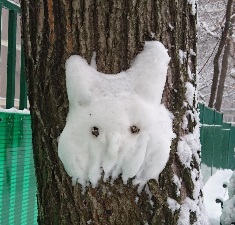 Снегопад в Москве февраль 7.jpg