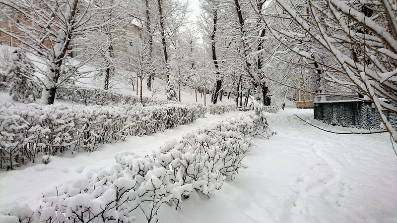 Таганка зима 2018 5.jpg
