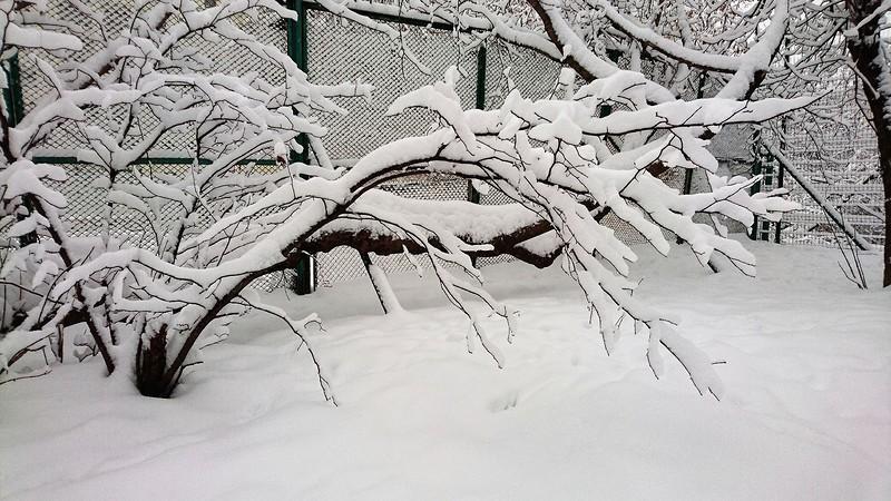 Таганка зима 2018 8.jpg