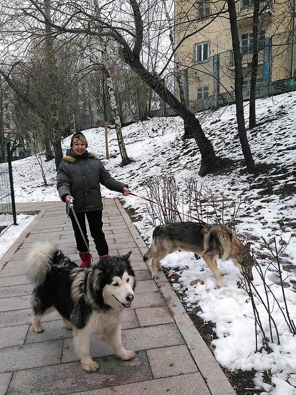 Ольга с Кармой и Канисом 21 декабря 2017 1.jpg