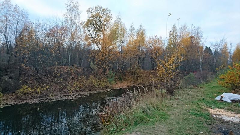 Природа 3.jpg
