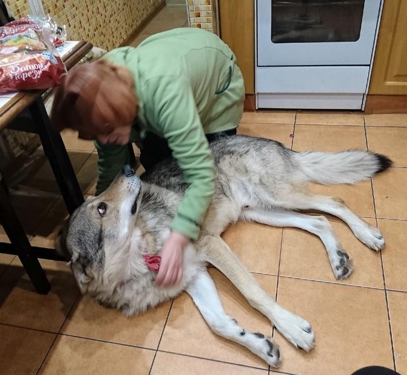 Галя Федулова и Канис 25 декабря 2018 7.jpg