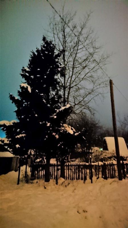 Зимушка зима 1 января 2019 2.JPG