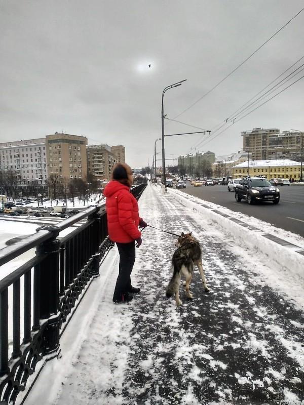Алиса Канис 27 января 2019 1.jpg