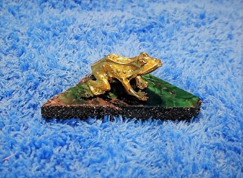 лягушки 5.jpg