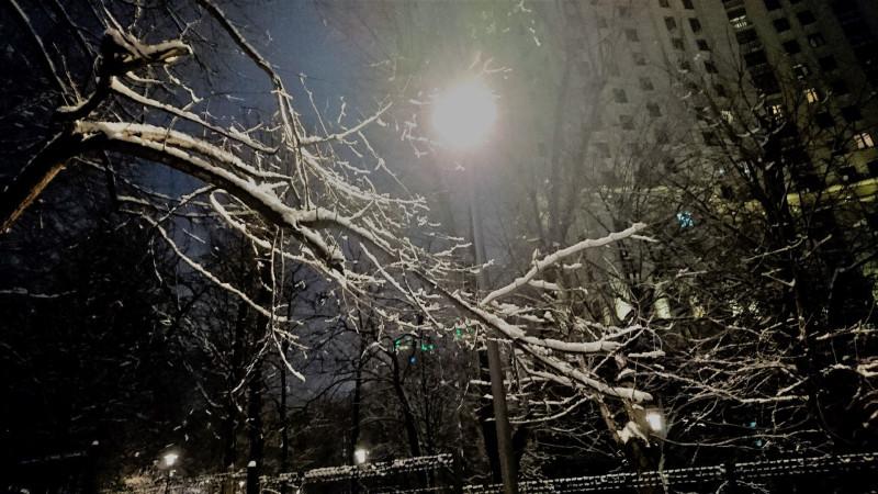 Снегопад 13 февраля 2019 24.jpg